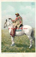 274647-Native American Assiniboine Indians, Judge George Rustler On Horse, Detroit Pub No 11355 - Native Americans