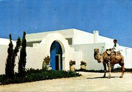 TUNISIE  RAOUAD TOURING CLUB DE TUNISIE - Tunisia