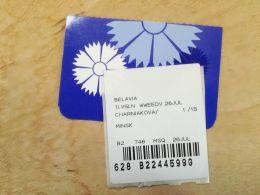 Plane Ticket Transport Airplane Belavia Belarus Airlines Minsk-Tel Aviv Israel Boarding Pass - Plane