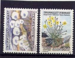 Groenland Greenland 1989 Yvertn° 185-86 *** MNH Cote 8,50  Euro Flore Bloemen Flowers - Groenland