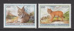 1996 Tajikistan Wild Cats Set Of 2 MNH - Tadjikistan