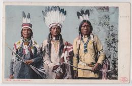 Apache Warriors - Indien - Native Indian - Indiens D'Amérique - Detroit Publishing Co 1906 - Indianer