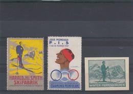 3 VIGNETTES. HARALD & Hj SMITH SKIFABRIK St MORITZ / CHAMONIX-MONTBLANC JEUX MONDIAUX FIS 1937 / WINTER-PARTENKIRCHEN - Commemorative Labels