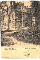 COURT-ST-ETIENNE   Château De Wisterzée. - Court-Saint-Etienne