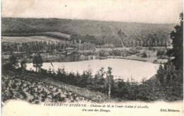 COURT-ST-ETIENNE  Chateau De M Le Comte Goblet D' Alviela   Un Coin Des  étangs. - Court-Saint-Etienne