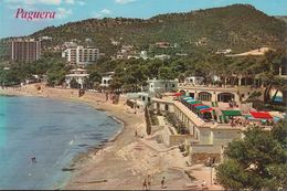 Spanien - Mallorca - Paguera - Vista Parcial - Beach (80er Jahre) - Mallorca