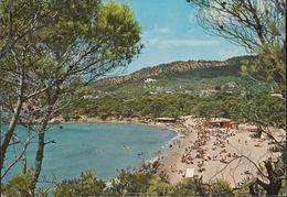 Spanien - Mallorca - Paguera - Beach - Nice Stamp (alte Ansicht) - Mallorca