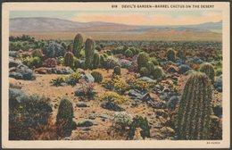 Barrel Cactus On The Desert, Devil's Garden, California, 1937 - Western Publishing & Novelty Co Postcard - United States