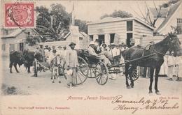 CPA N°94 Suriname Paramaribo Attelage Cheval - Surinam