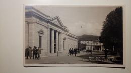 Montecatini - Terme Leopoldine E Stabil. Tettuccio - Viaggiata 1930 - Animata - Vera Fotografia - Pistoia