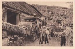 Belle CPA Animée En MORVAN  Scène De BATTAGE Du BLE  Paysans Et BATTEUSE Matèriel Agricole - Bourgogne