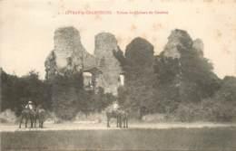 CIVRAY LE CHAMPENOIS RUINES DU CHATEAU DE COUDRAY - France