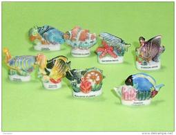 Série De Fèves Complète : Les Poissons Tropicaux - Animals