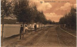 GENVAL -les -eaux   Une Avenue Du Parc. - Rixensart