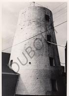 Tollembeek MOLEN / MOULIN -Originele Foto Jaren '70 ( A.Carre) 91 - Edingen