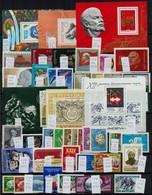 ** Szovjetunió + Utódállamok 77 Db Klf Bélyeg (sorok, Darabok, önálló értékek) + 6 Db Blokk Berakólapon - Stamps