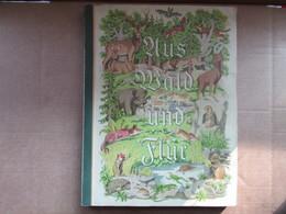 Aus Wald Und Flur / Band 3 - Books, Magazines, Comics