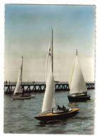 14 Deauville Trouville N°1762 Retour Au Port Des Régates Beaux Voiliers - Voiliers