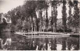 Br - Cpsm Petit Format SAINT MAIXENT L'ECOLE (Deux Sèvres) - Le Bassin Nautique - Saint Maixent L'Ecole