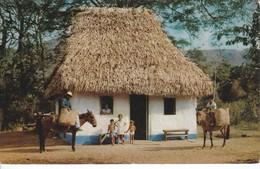 POSTAL DE PANAMA DE UN BOHIO TIPICO EN UNA ALDEA DE MONTAÑA (MIRRO-KROME) - Panamá