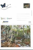 ARGENTINA POSTAL STATIONERY YEAR 2010, YEAR OF BIOLOGICAL DIVERSITY ANIMALS FAUNA - Enteros Postales