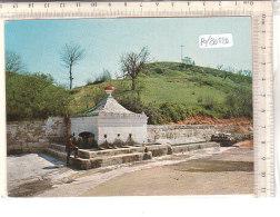 PO8052D# BARI - BITONTO - SPINAZZOLA - FONTANA DI ROLLA  VG - Bitonto
