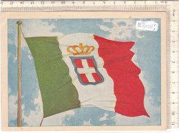 PO8121D# PUBBLICITA' POLITICA - PARTITO NAZIONALE MONARCHICO - BANDIERA ITALIA REGNO  No VG - Partiti Politici & Elezioni