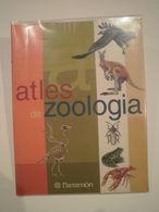 Atles De Zoologia. Parramón Ediciones. 1a Edició 2001. 96 Pàgines. Il·lustrat. Autors: José Tola I Eva Infiesta. - Livres, BD, Revues