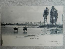 LE BOURGET    AU BORD DU LAC - France