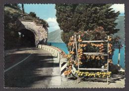 70256/ LAGO DI GARDA, Gardesana Occidentale - Italia