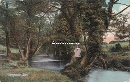 Old Colour Postcard; Caergwrie. Spa. Flintshire. C1900 - Flintshire