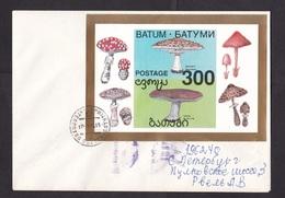 Georgia - Batum/Batumi: Cover To Russia, 1994, Souvenir Sheet, Mushroom, Fungus, Rare Real Use! (traces Of Use) - Georgië
