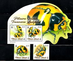 PITCAIRN ISL, 2018, INSECTS- LADYBIRD,2v+ S/S,.MNH**NEW! - Insectes