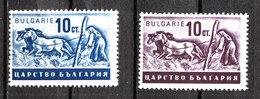 Bulgaria  -  1940. Trebiatura Con Cavalli. Threshing With Horses. MNH - Agricoltura