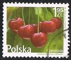 2009 - POLONIA / POLAND - CILIEGIE - CHERRIES - USATO / USED. - Frutta