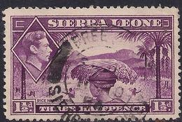 Sierra Leone 1938 - 44 KGV1 1 1/2d Mauve SG 190a ( G1487 ) - Sierra Leone (...-1960)