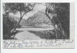 Wanganui River - Undivided Back - New Zealand