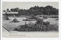 Invercargill Gardens - Undivided Back - New Zealand