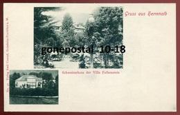 1766 - GERMANY Gruss Aus Herrenalb 1900s Schweizerhaus Der Villa Falkenstein - Germania