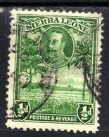 Sierra Leone 1932 KGV 1/2d Green Rice Field SG 155 ( G1361) - Sierra Leone (...-1960)