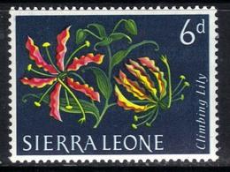 Sierra Leone 1963 QE2 6d Flowers Climbing Lily MM SG 248 ( G1350 ) - Sierra Leone (1961-...)