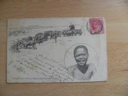 1908 Afrique Du Sud Enfant Noir Waggon Travelling In Basutoland - Südafrika
