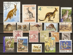 Kangourous - Petit Lot De 19 Timbres° - Vrac (max 999 Timbres)