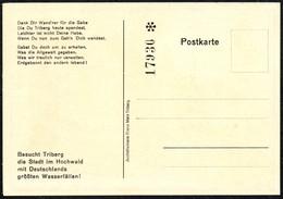 B8195 - TOP Triberg - Eintrittskarte - Ansichtskarte - Eintrittskarten