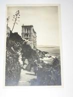 PRINCIPATO DI MONACO - MUSEO OCEANOGRAFICO VIAGGIATA 1939 BN VG - Museo Oceanografico