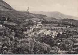 119 - Pieve - Dintorni Di Camaiore - Italia