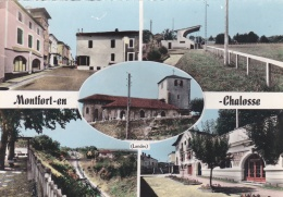 MONTFORT-en-CHALOSSE (40) Vues Multiples - Montfort En Chalosse