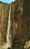 MEXICO ,Ocampo  , Chihuahua  , Cascada De Basaseachic - Messico