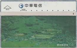 Telecarte CHINE -  POISSON - - Fish