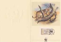 WWF - 082,91 - € 3,31 - FPP - Feuillet Pliant 1er Jour - Proof - 18-5-1989 - 20FILS - Desert Carnivores - South Yemen 19 - W.W.F.
